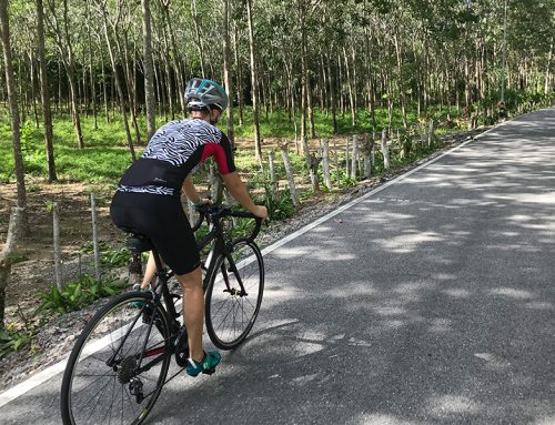 Studie: Mit gleichmäßiger Renneinteilung auf dem Rad gewinnst du Rennen
